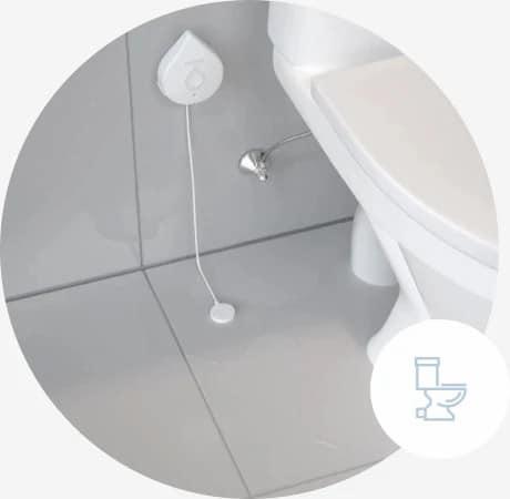 detecor-next-to-toilet